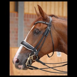"Bride Muserolle Large ""Dressage"" - Dy'on"