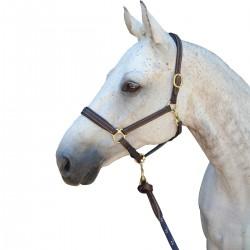 """Licol """"P.E La Baule"""" - Privilège Equitation"""